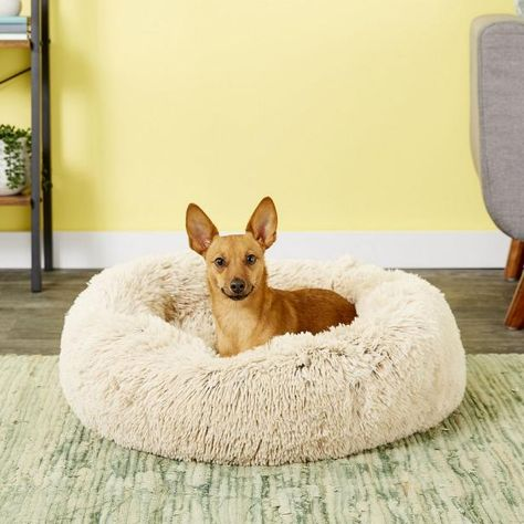 For pups who sleep belly up, curled up, sprawled out or on their side, these top-rated dog beds will ensure they get the best rest ever. 🐶 💤