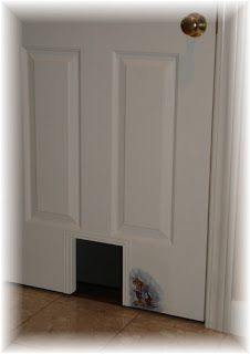 Cat Door....we Could Use A Few Of These.