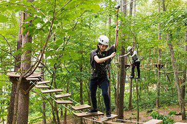 きたゆざわ 森のソラニワ 公式 北海道の温泉宿 野口観光グループ 温泉 観光 森