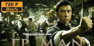 Ip Man 2008 720p Bdrip Multi Audio Telugu Dubbed Movie In 2020 Ip Man 2008 Ip Man Telugu