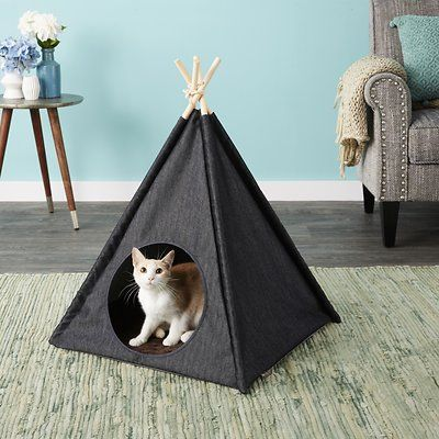 P L A Y Pet Lifestyle And You Dog Cat Teepee Tent Classic Eggshell Chewy Com Cat Teepee Teepee Tent Dog Bed