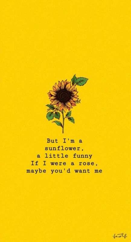 Best Flowers Background Tumblr Dreams 15 Ideas Sunflower Quotes Wallpaper Quotes Sunflower Wallpaper