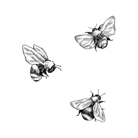 Cute Tattoos, Small Tattoos, Bumble Bee Illustration, Bee Sketch, Bee Silhouette, Bumble Bee Tattoo, Honey Bee Tattoo, Gravure Illustration, Tatuagem Old School