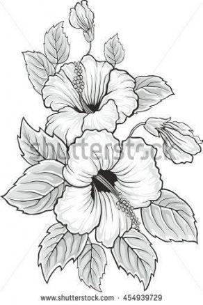 Super Flowers Design Coloring Pages 65 Ideas Flower Drawing Hibiscus Flower Drawing Flower Sketches