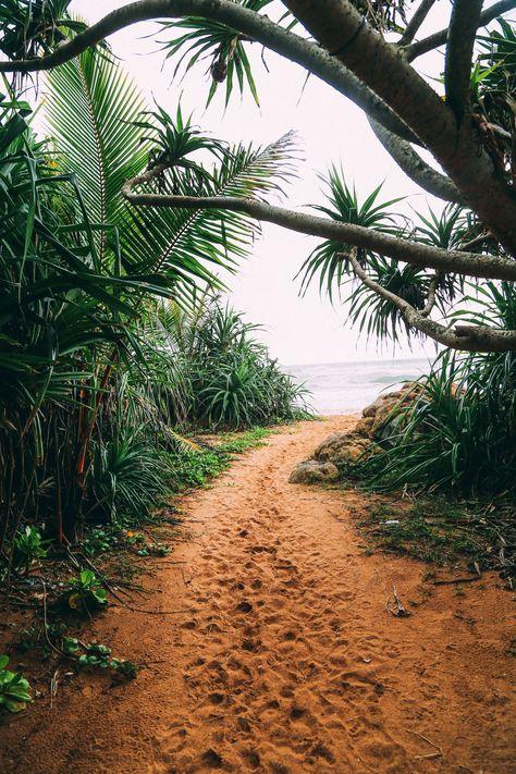 Exploring Beruwala And Bentota, Sri Lanka