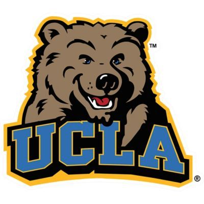 This UCLA Bruins Mascot Table Sign will add some school spirit to your desk. Featuring the school mascot and team colors, this fiberboard decoration is the perfect gift for students or alumni. Ucla University, Green Companies, Football Mexicano, Dream School, Ucla Bruins, Student Gifts, College Football, Ucla College, Stickers