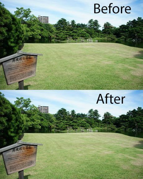 Garbage Clean Up In Japanese Park Before And After Japanese