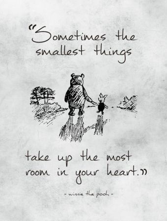 """Sometimes the smallest things take up the most room in your heart.""- A.A. Milne, Winnie-the-Pooh"