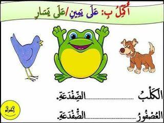تمارين حول الأوضاع النسبية أمام وراء تحت فوق موارد المعلم Learning Arabic Learn Arabic Alphabet Kids Education