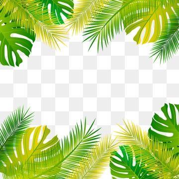 Green Fresh Tropical Palm Leaf Frame Background Originality Leaf Botany Png Transparent Clipart Image And Psd File For Free Download Tropical Frames Tropical Flower Frame
