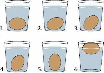 Cómo Saber Si Los Huevos Están Frescos O En Mal Estado Sólo Necesitas Un Vaso De Agua Para Saberlo Huevos Huevos Frescos Fresco