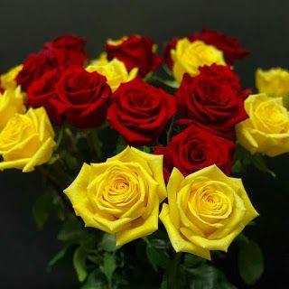 بوكيهات ورد شيك جدا 2020 Wallpaper Iphone Roses Pretty Flowers Rose