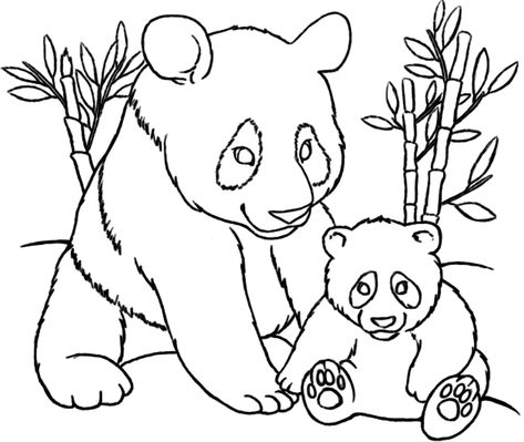 Cute Panda Coloring Pages Mom And Baby Panda Coloring Pages