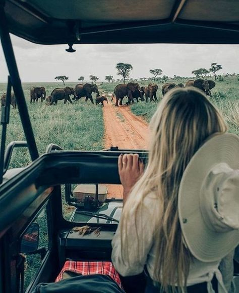 Have Breakfast With Giraffes in This Kenya Hotel