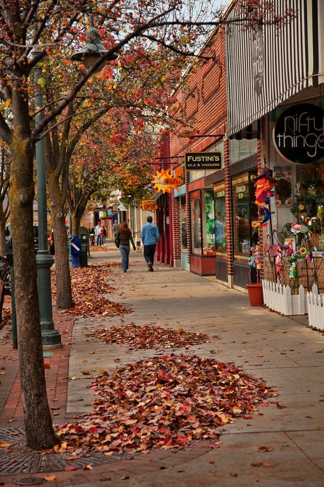 Photos of Traverse City, Michigan along Front Street in the Fall. Seen are Spice Merchants, Nifty Things and Fustini's.