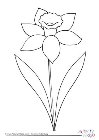 Daffodil Colouring Page Flower Drawing Daffodil Color Spring