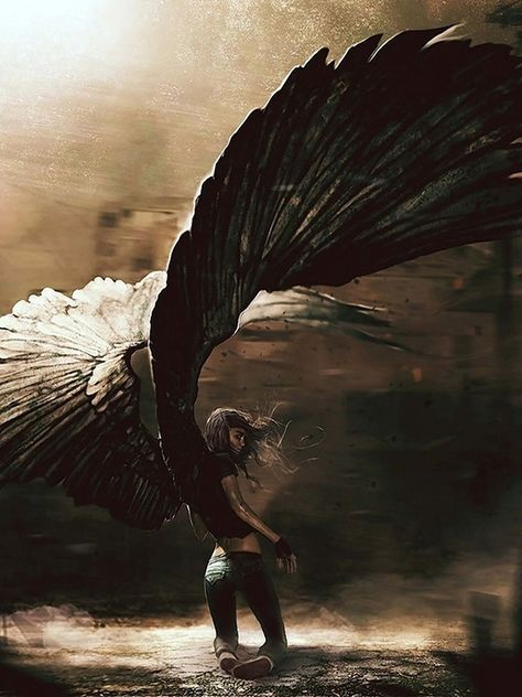 This reminds me of Maximum Ride (Secret Wings) Fantasy World, Fantasy Art, Character Inspiration, Character Art, Angel Falls, Maximum Ride, Angel Warrior, Ange Demon, Angels And Demons