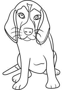 Cachorro Para Colorir E Pintar Desenho De Cachorro Cachorro