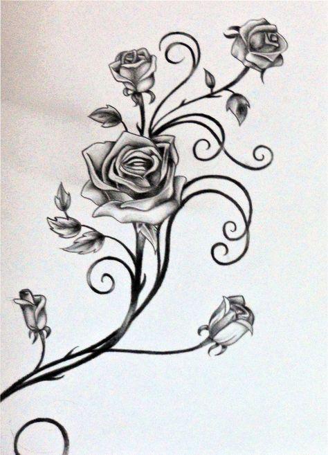 #rosilutfi #drawings #leaves #vines #roses #vine #and #and #the #of #byDrawings of Vines and Leaves | Roses and The Vine by rosilutfi