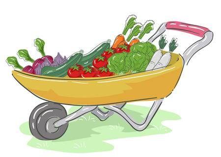 Ilustración de una carretilla llena de cultivos como lechuga ...