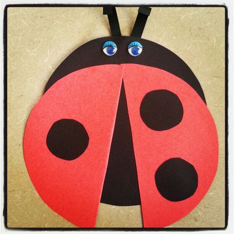 Did you know that ladybugs are considered lucky? Come & find out more cool facts about insects @ Alamito's bug storytime this week!