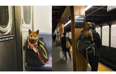 Subway Map Nyc Trip Planner.Mta Transit Map Ny Subway 1 Nyc Transit New York Subway Trip