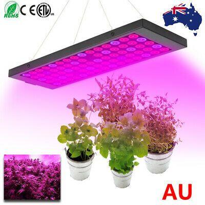 300W LED Grow Light Lamp IR Full Spectrum Hydroponic Veg Bloom Indoor Plant