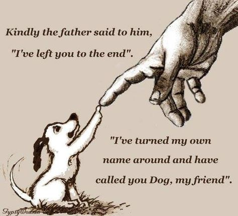 """A beautiful and comforting thought. As it is said """"all dogs go to heaven."""""""