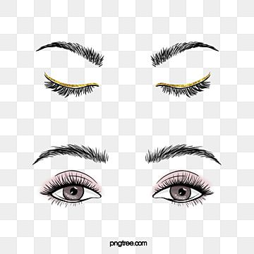 Makeup Eyelash Gold Powder Eyeliner Eyelash Clipart Cosmetics Beauty Makeup Png Transparent Clipart Image And Psd File For Free Download In 2021 Makeup Eyelashes Powdered Eyeliner Makeup Clipart