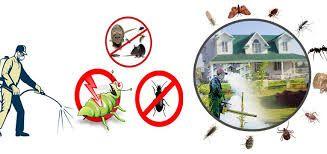 Pest Control Roanoke Va Pest Control Services Termite Pest Control Pest Control