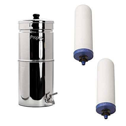 Amazon Com Propur Big With 2 Proone G2 0 7 Filter Elements Home Improvement Water Filter Review Water Filter Countertop Water Filter