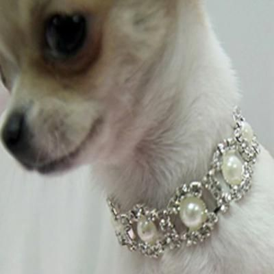 Chihuahua Bling Necklace Small Dog Faux Pearl And Diamante