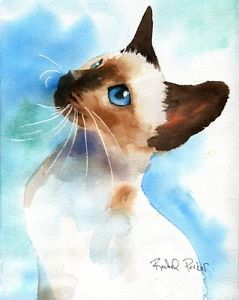 Details About Giclee Print Siamese Chocolate Seal Point Cat Art
