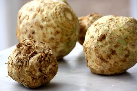 You Can't Judge A Celery Root By Its Looks | Celeriac recipes, Food, Root  recipe