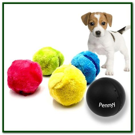 Moving Dog Toys Balls Dog Ball Dog Toys