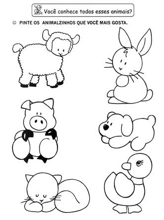 Resultado De Imagem Para Imagens De Animais Domesticos Para