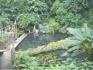 Ini Sumber Air Pdam Tomohon Publikreport Com Minuman Air Pemerintah