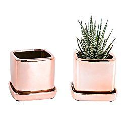 Rose Gold Accessories Ceramic Planters Succulent Pots Rose Gold Decor