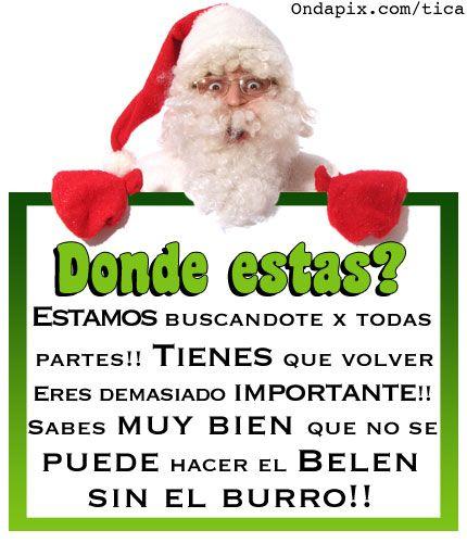 Frases Divertidas Sobre Navidad.Las 453 Mejores Imagenes De Navidad Frases En 2019 Navidad