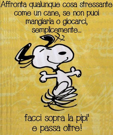 Pin Di Paulita Paz Su Frases Snoopy Citazioni