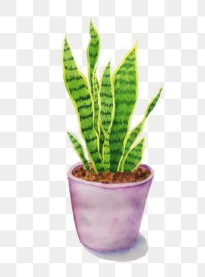 Pin By Babylyn Mailig On Wreath Watercolor Wreath Watercolor Plants Flower Pots