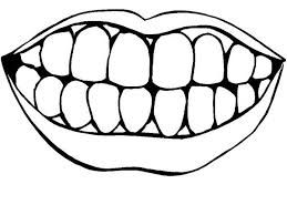 Image Result For Coloring Sheet For Mouth Dental Pictures Teeth