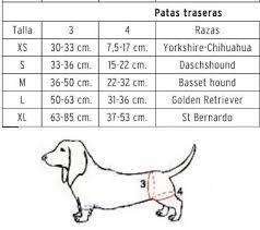 Resultado De Imagen Para Como Tomar Medidas De Ropa Para Perros Ropa Para Perros Como Tomar Medidas Accesorios Para Perros