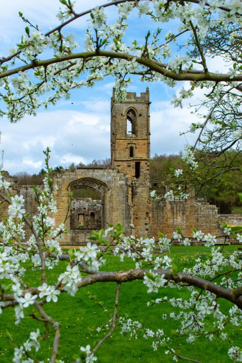 The 5 Best National Trusts In North Yorkshire By Someone Who Has Visited Them All In 2020 North Yorkshire Best Travel