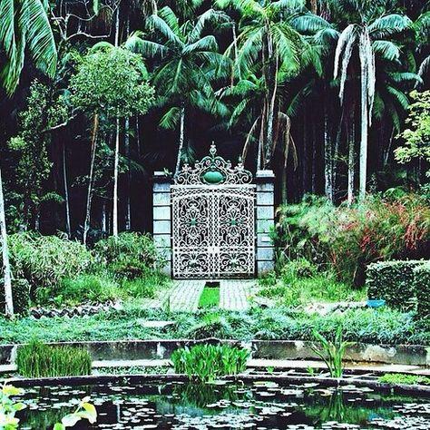 15. Jardim Botânico - 30 lugares deslumbrantes em São Paulo que vão fazer você se sentir um turista (Thx Helio)