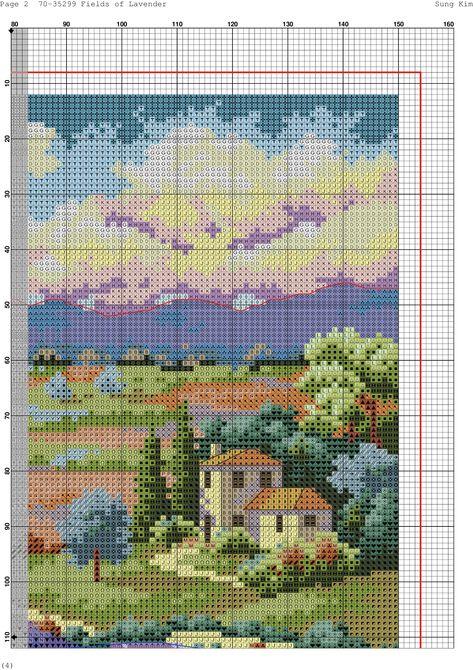 fields of lavender-4
