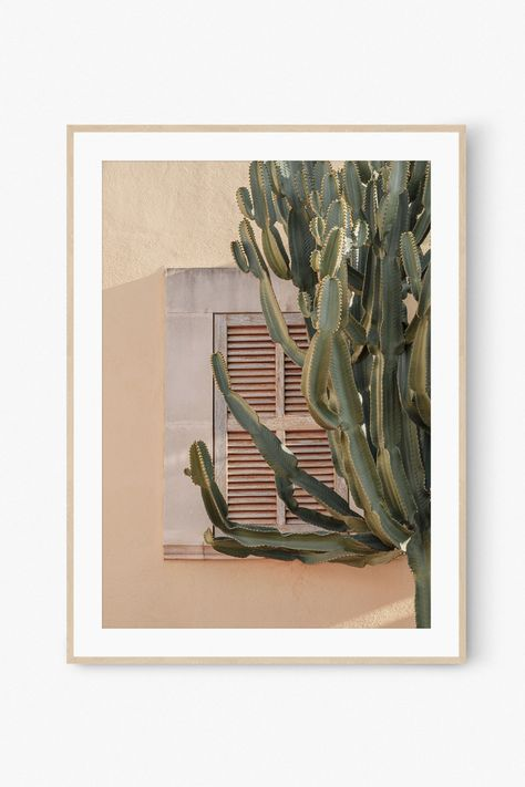 Cactus Mediterranean Wall Art Print Photography