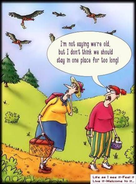 Growing Old Old Age Humor Funny Cartoons Funny Pictures