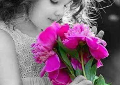 صور زهور ورد طبيعي عن الحب عالم الصور