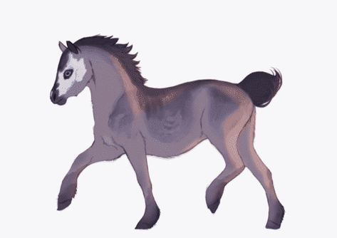 Some animation student probably at Gobelins school . Creature Drawings, Horse Drawings, Cute Animal Drawings, Cute Drawings, Fantasy Creatures, Mythical Creatures, Animation Reference, Cool Animations, Sprites